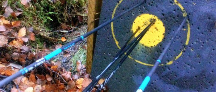 Scoring Arrows at Arrowfield